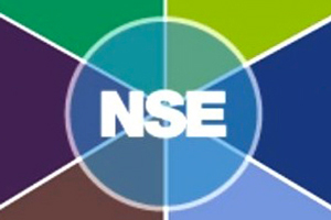 Nse Industry S.r.l. (2010-2018)